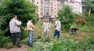 Der urbane Garten wird als Begegnungsort im Kiez inszeniert und die Nachbarschaft in die Gestaltung des städtischen Sozialraums einbezogen